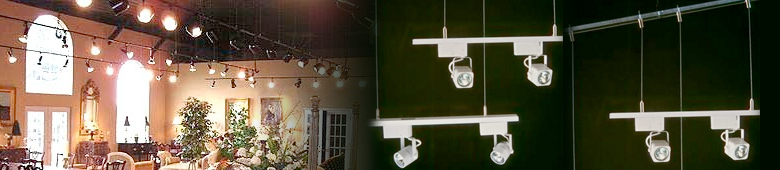 Track lighting suspension system track suspension aloadofball