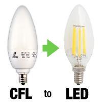 Decorative LED Bulbs