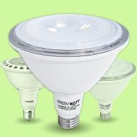 PAR38 LED Bulbs