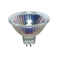 EXN/OS outdoor fixture replacement bulb