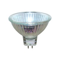 BAB/OSL outdoor fixture replacement bulb