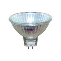 FMW/OSL outdoor fixture replacement bulb