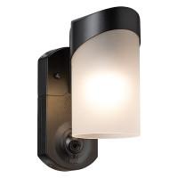 Maximus Contemporary smart security light, HD camera, Two-Way talk, Siren, 3000K SPL09-05A1W4-BKT-K1