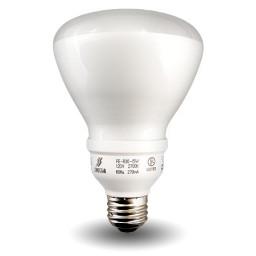 Bulk R30-Lamp Compact Fluorescent - CFL - 15watt - 27K