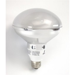 Bulk Top R30-Lamp Compact Fluorescent - CFL - 20watt - 50K