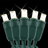 LED Christmas lights 12volts AC Specifically for Landscape lighting systems