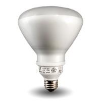 Bulk R40-Lamp Compact Fluorescent - CFL - 20watt - 50K