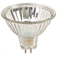 Bulk EYC MR16 75Watt 12V Flood with Cover Glass SALE