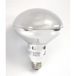 Top R30 Compact Fluorescent Lamp - CFL - 20watt - 27K