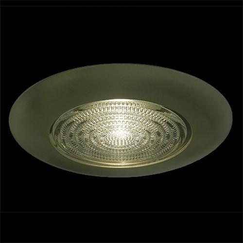 6 Quot Recessed Lighting Fresnel Lens Satin Shower Trim