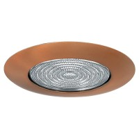 "6"" Recessed lighting fresnel lens bronze shower trim"