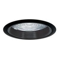 """6"""" Recessed lighting A19 fresnel lens black baffle black shower trim"""