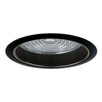 """6"""" Recessed lighting A19 fresnel lens specular black reflector black shower trim"""