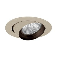 "4"" Recessed lighting satin eyeball trim rim for R/Par 20 lamp"