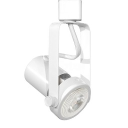 LED Gimbal WHITE track light with LED PAR20 Flood light bulb