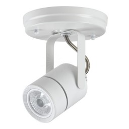 Maximus LED canopy light white mini round 10watt narrow flood dimmable line voltage 120volt