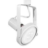 LED WHITE gimbal track light with PAR38 LED bulb