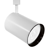 PAR30 WHITE flat back cylinder track light fixture