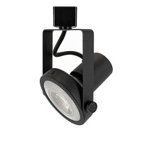 LED Gimbal BLACK track light with PAR30 LED bulb