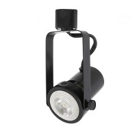 LED Gimbal BLACK track light with LED PAR20 flood light bulb